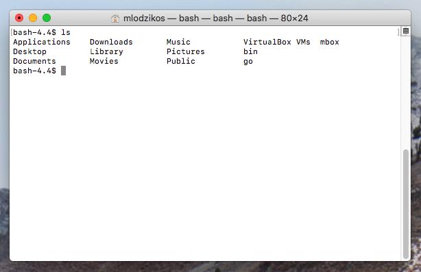 basic bash terminal on osx